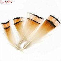 10pcs/pack Natural Golden Color Pheasant Head Crest Feather Fly Tying Materials