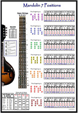 MANDOLIN 7 HAND POSITIONS POSTER - IMPROVISE IN ANY KEY !