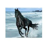 Fine Horse DIY 5D Diamond Embroidery Painting Cross Stitch Craft Kit Home Decor