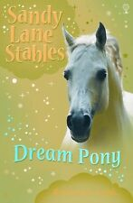 Dream Pony (Sandy Lane Stables)