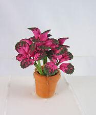 Dollhouse Miniature Coleus House Plant, A1014