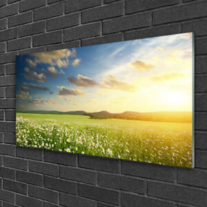 Tulup Glass print Wall art 100x50 Image Picture Meadow Flowers Landscape