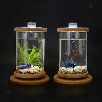 Desktop Decor Small Fish Tank Cylinder Aquarium Terrarium for Goldfish Betta