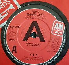 """Y & T  7"""" DON'T WANNA LOSE PROMO"""