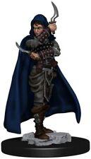 Female Human Rogue Pathfinder Premium miniature D&D Dungeons Dragons assassin Z