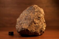 1.36 kilogram Seymchan pallasite meteorite, oriented individual