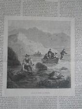 Gravure 1879 - Chasse et Pêche à la Tortue avec article