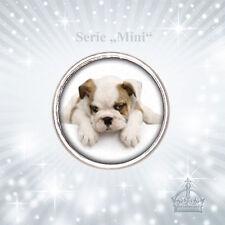 Mini Click Button Bulldogge Hund Welpe 12mm kompatibel m. Chunks Systeme MCB57