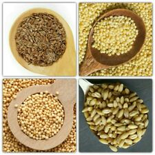 Ancient Grains; Grow Your Own (Series #2) Flax / Millet / Amaranth / Farro seeds