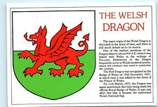The Welsh Dragon Red Dragon Royal Badge of Wales Vintage 4x6 Postcard A48