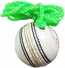Leather Hanging Cricket Ball US