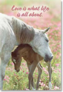 """LEANIN TREE """"Love is What Life is All About""""~Mare and Foal Horse #25676~Magnet~"""