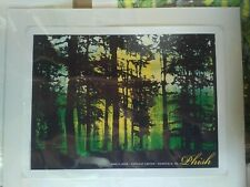 Phish - Mansfield, Ma 06-06-09 - Smith - Screen Print - Official