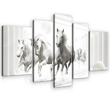 SET (5 teilig) Leinwandbild Wandbild Bild Kunst Pferd Kugeln Tunnel 3FX10154S4A