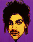 Andy Warhol Prince #3 Canvas Print 16 x 20  #9916