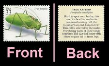 Us 3351p Insects & Spiders True Katydid 33c single Mnh 1999