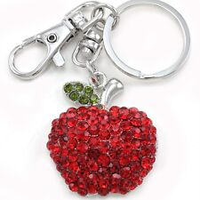 Back To School Teacher's Pet Red Apple Fruit Keychain Ring Charm Car Accessory