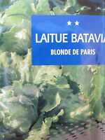 Légume Graines semences Salade LAITUE BATAVIA Blonde de Paris. Seeds  bio
