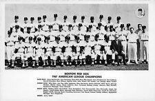 1967 Red Sox Team Tony Conigliaro Original Real Photo