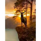 5D Full Drill Diamond Painting Kits Art Embroidery Decors Deer DIY Gifts Arts