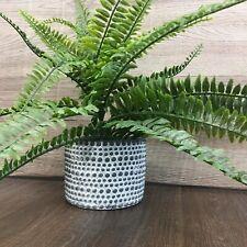 Decorative Grey Concrete Planter Pot White washed with Raised Dots 12cm