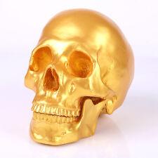 1:1 Life Size Split Skeleton Human Head Skull Halloween Fossil Resin Model Gold