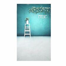 Bule Wall Flower Ladder Photography Backgrounds Vinyl Studio Photo Backdrop Prop