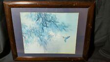 "David Lee ""  Spring Bamboo Hummingbird "" Framed print 1978."
