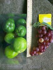 Äpfel Weintrauben Lot 8 lebensechte Fake faux Obst schwer Deko Filler USA Verkäufer
