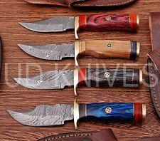 LOT OF 4 | 6 INCH CUSTOM DAMASCUS STEEL  HUNTING KNIFE |WOOD HANDLE B8-11679