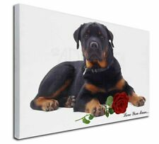 More details for rottweiler+rose 'love you mum' x-large 30