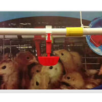 10 Pcs Hen Plastic Automatic Drinker - Poultry Chicken Water Drinking Cups