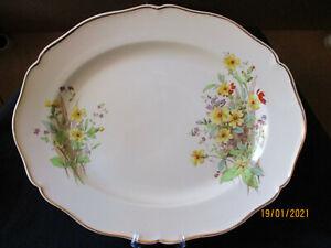 Royal Doulton. Somerset. Large Serving Plate. (40cm x 32cm). D6029. England.
