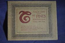 Ca 1900 *EARLY* The Pines, Windham, Greene County Resort Brochure