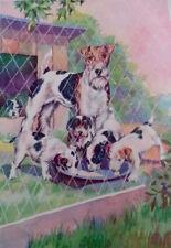 Vintage Wire Fox Terrier Dog 1939 Children's Book Illustration Victor Becker