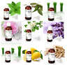 100% Pure Certified Allin Essential Oils Therapeutic Grade 15 ml Fast Free Ship