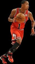 {24 inches X 36 inches} Derrick Rose Poster #2 - Free Shipping!