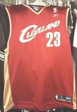Cleveland Cavaliers NBA Reebok Wine LeBron James #23 Large Jersey