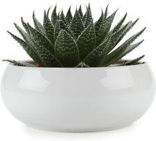 16.5CM Ceramic White Round Simple Design Succulent Plant Pot Cactus Plant Pot