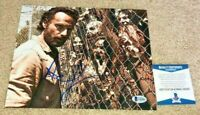 ANDREW LINCOLN  SIGNED 8X10 PHOTO THE WALKING DEAD TWD RICK GRIMES BAS