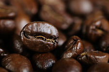 """MAFIA"" - The favorite Espresso of Tampa Bay's Goodfellas,  5 lbs, Fresh Roasted"