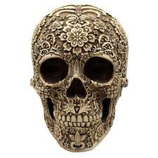 1:1 Lifesize Resin Human Head Skull Anatomical Skeleton Model Antique Decor