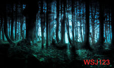 LB Vinyl Photography Background Studio Backdrop 20x10FT WSJ123 Halloween Forest