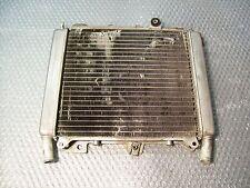 RADIATORE ACQUA PER PIAGGIO BEVERLY 500 DEL 2004 (e17969)