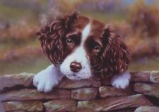 Springer Spaniel Puppy Dog Pup Art Painting Blank Leaving or Birthday Card