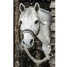 Full 5D Drill Diamond-Painting Art Craft White Horse Cross-Stitch Kit for Child