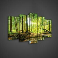 Canvas Picture Print Set  10513_PS17 Sunny Forest Wandbild Set Leinwandbild Kuns