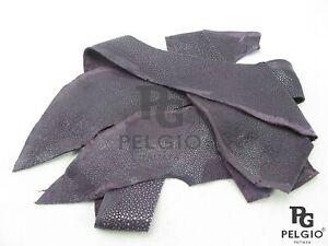 PELGIO Genuine Polished Stingray Skin Leather Hide Scraps 100 g Purple Free Ship