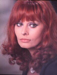SOPHIA LOREN Original 1970s 35mm Sexy Color Glamour Slide vv