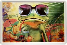 Caipirinhas Mojito Bar Deko Witziges Funny Blechschild 20x30 Metallschild 1276